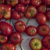 Farmers Market Heirloom Tomatoes