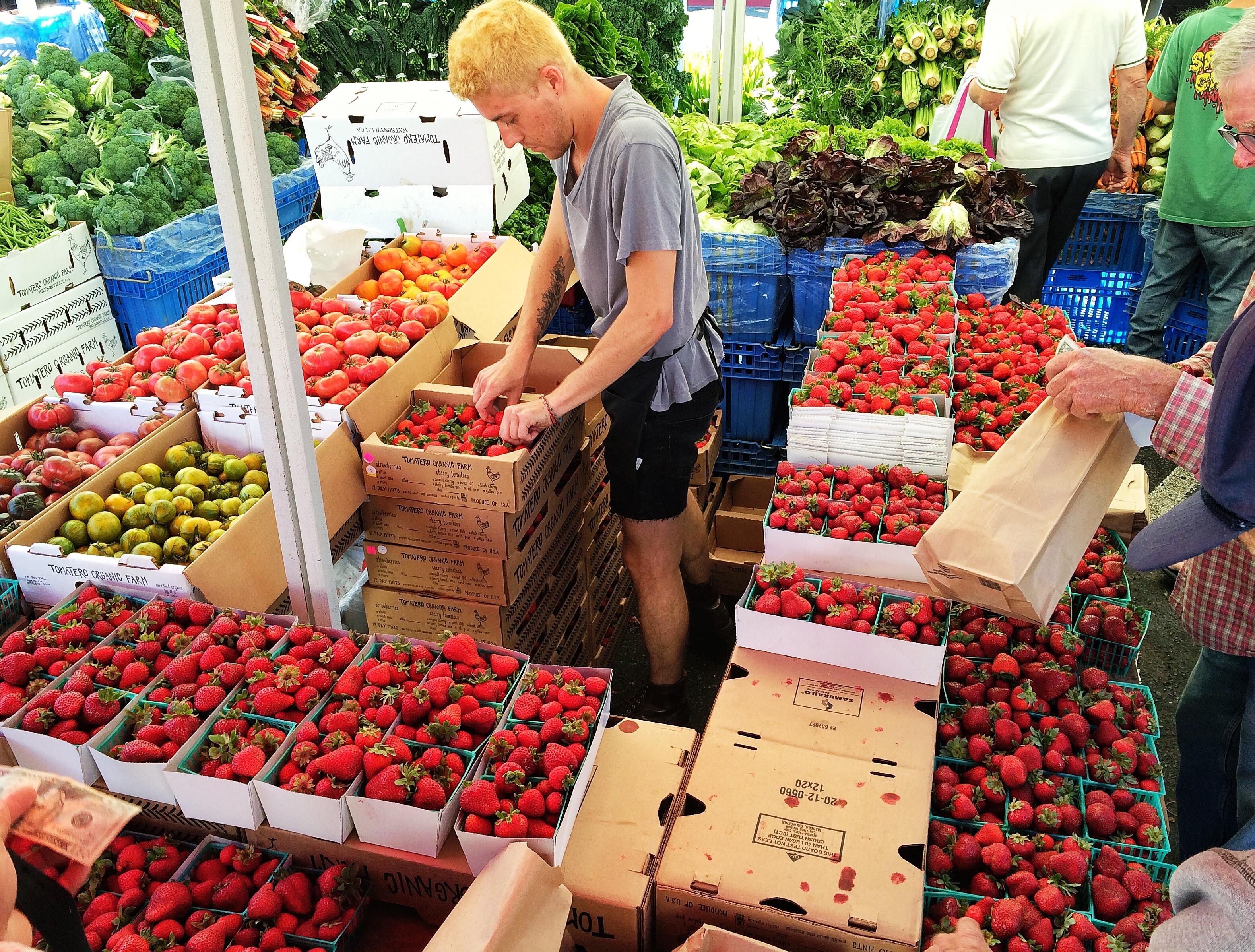 Organic strawberry slinger