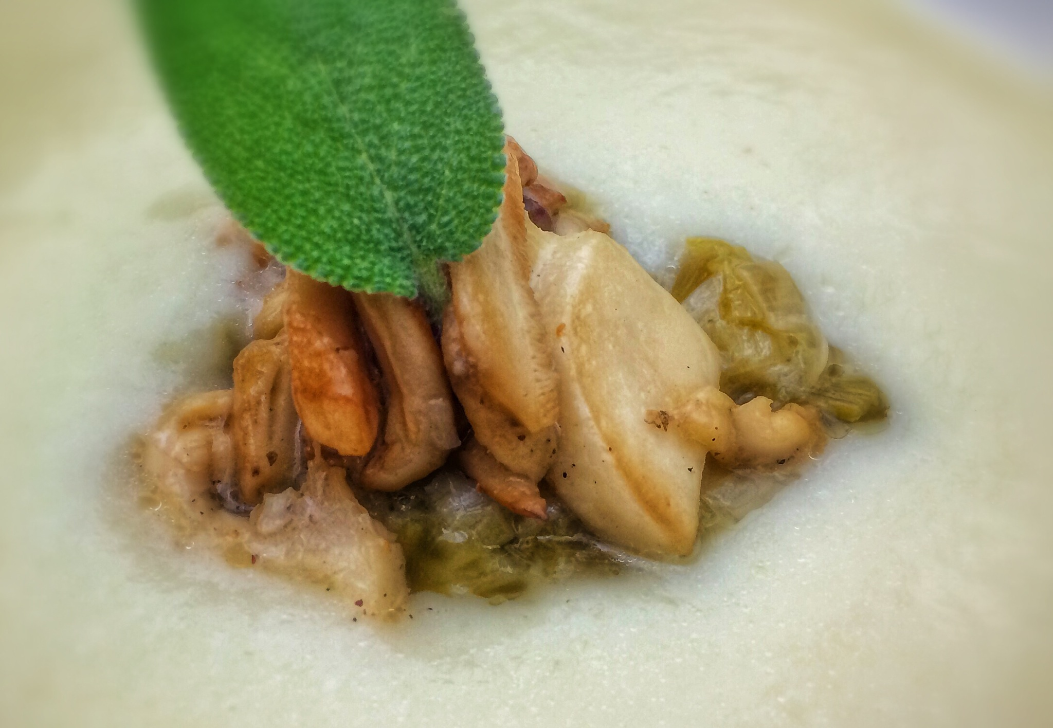 Sautéed Wild Matsutakes and Chanterelles garnish a Celery Root Bisque with Leeks and Sage