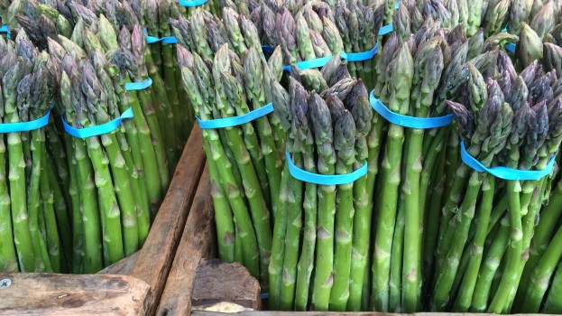 Asparagus from the capay Valley