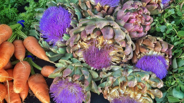 Artichoke Blossoms & Bunches of Carrots