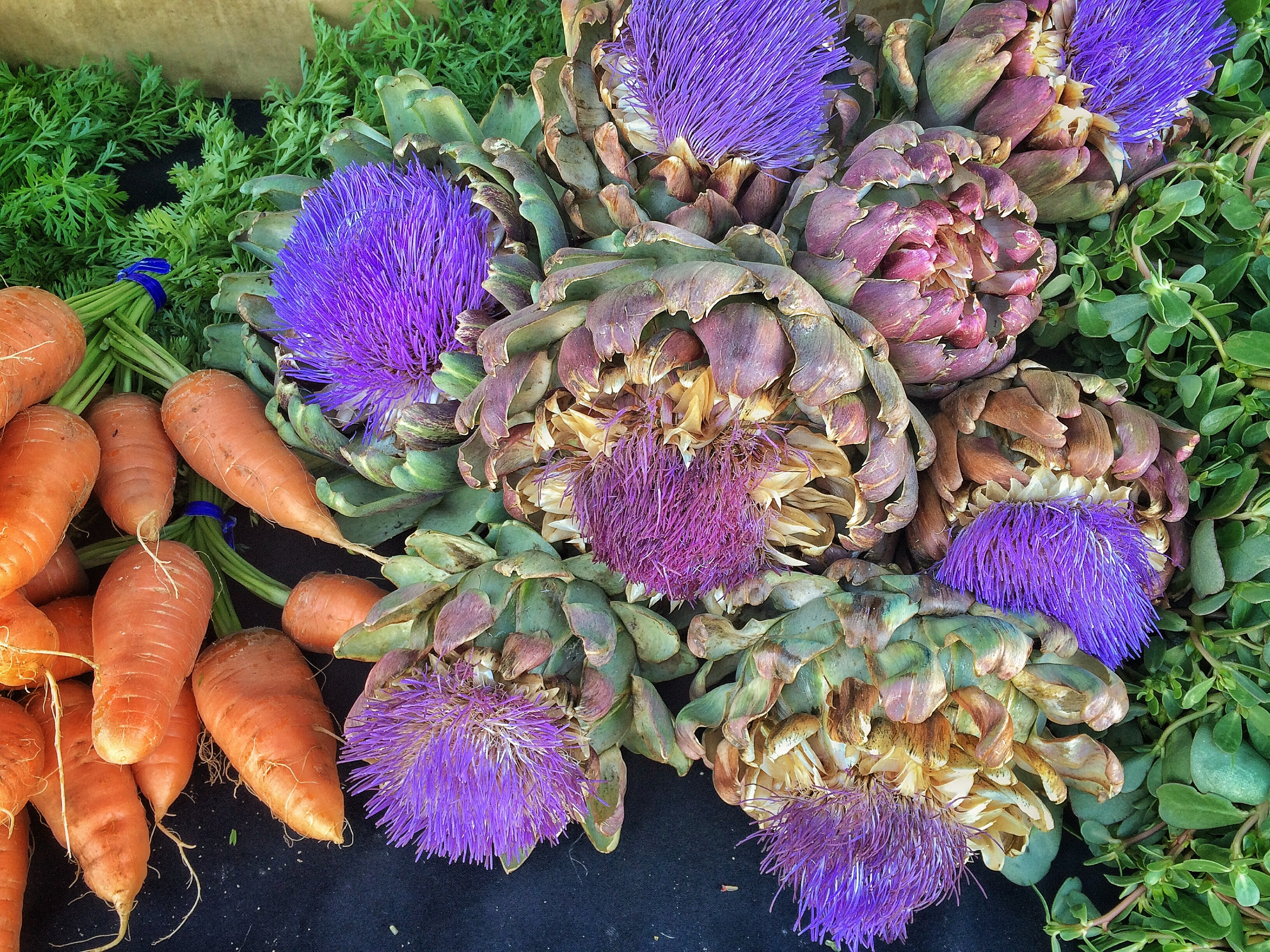San Rafael's Thursday Farmers Market in June – snapshots of what's happening.
