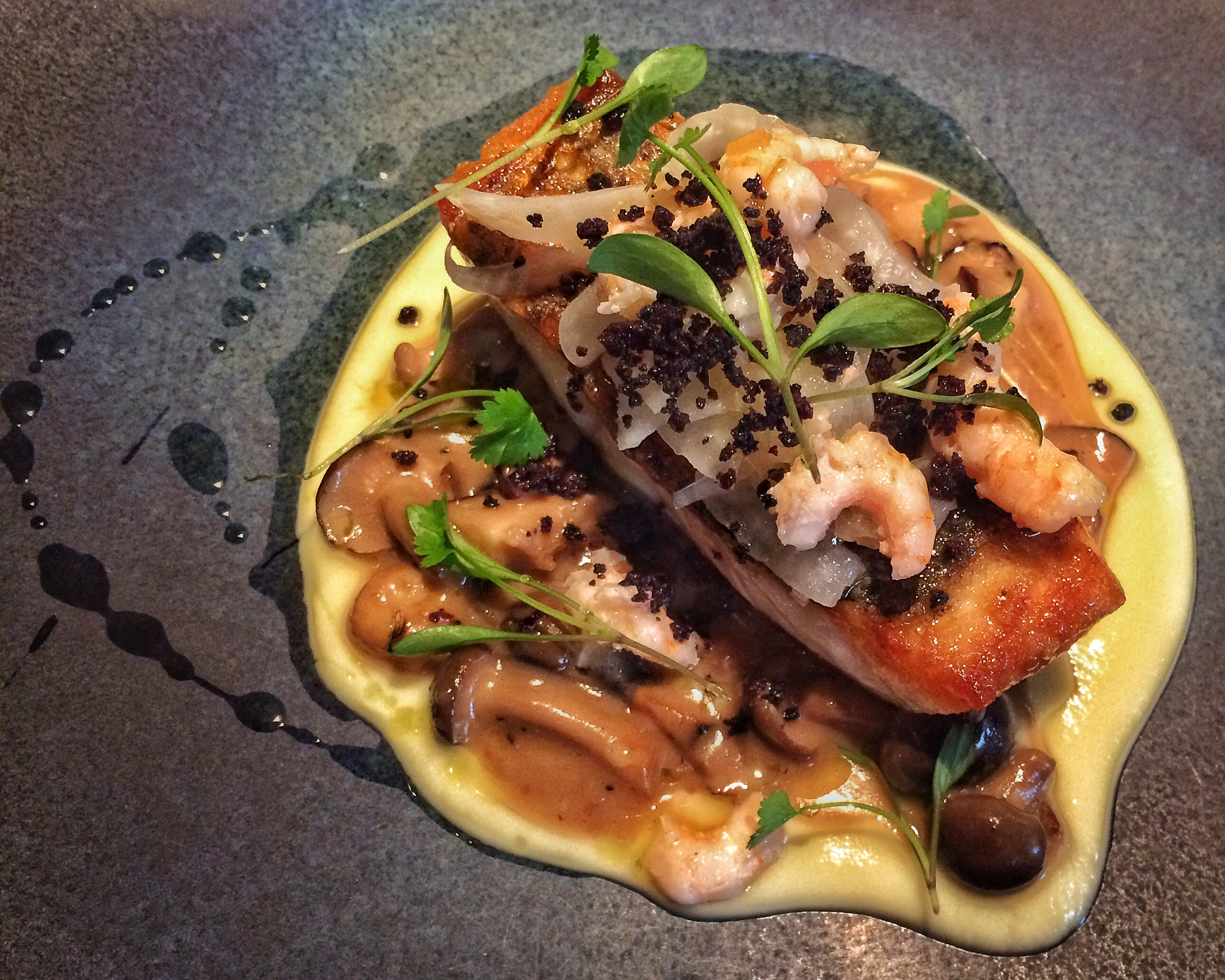 Seabass with Fennel & Poached Cultivated Mushrooms, Atlantic Shrimp, Black Olive Crumb with Virgin Olive Oil