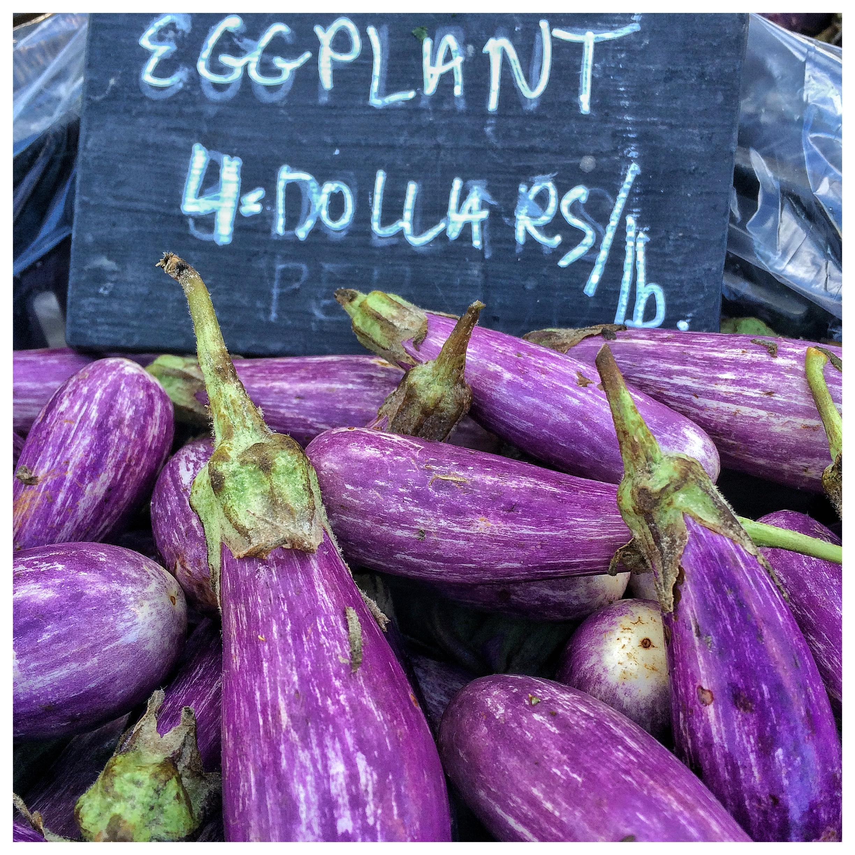 Star Route Eggplant