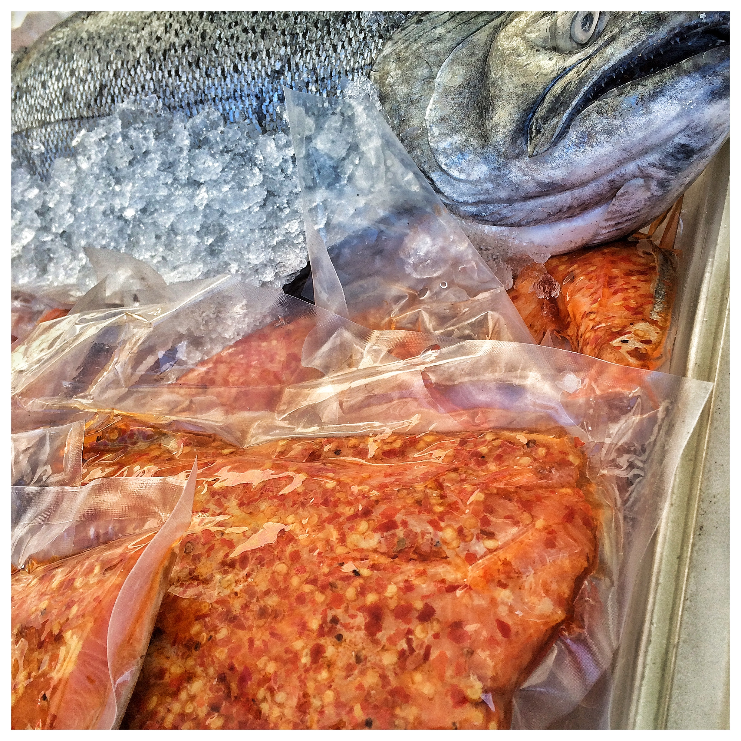 Wild Pacific Salmon at Mission Fish Stand