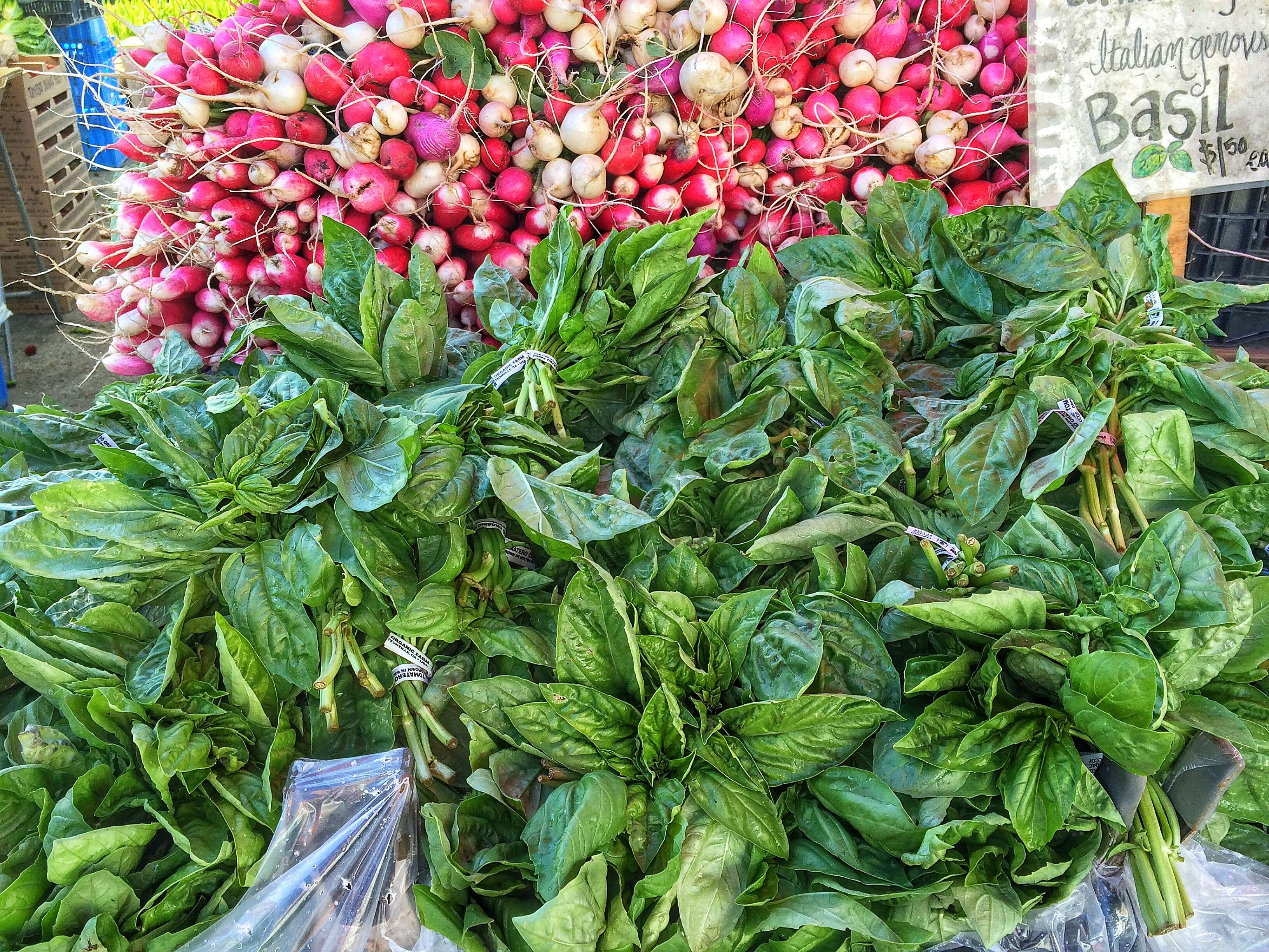 Tomatero Farms Basil