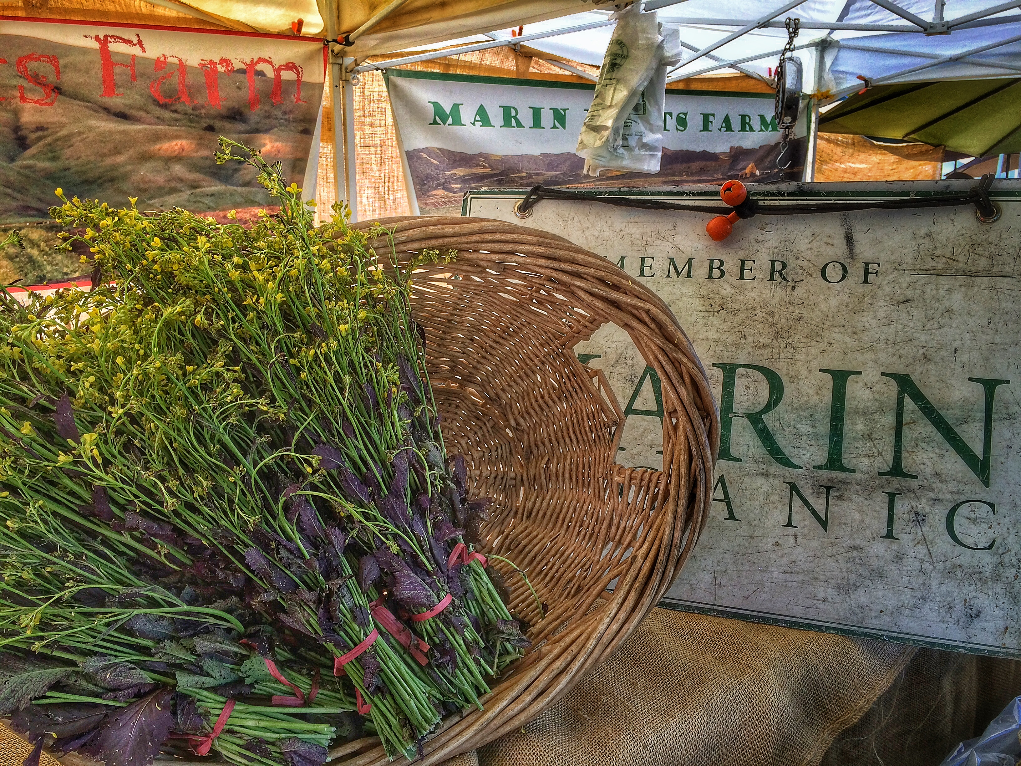 The Always Amazing Marin Roots Farm Stand