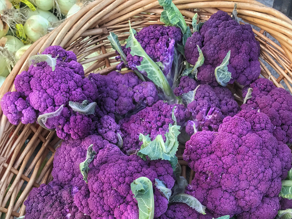 Marin Farmers Market in July – Snapshots of What's Happening