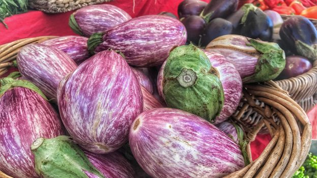 Eggplants from Full Belly Farm